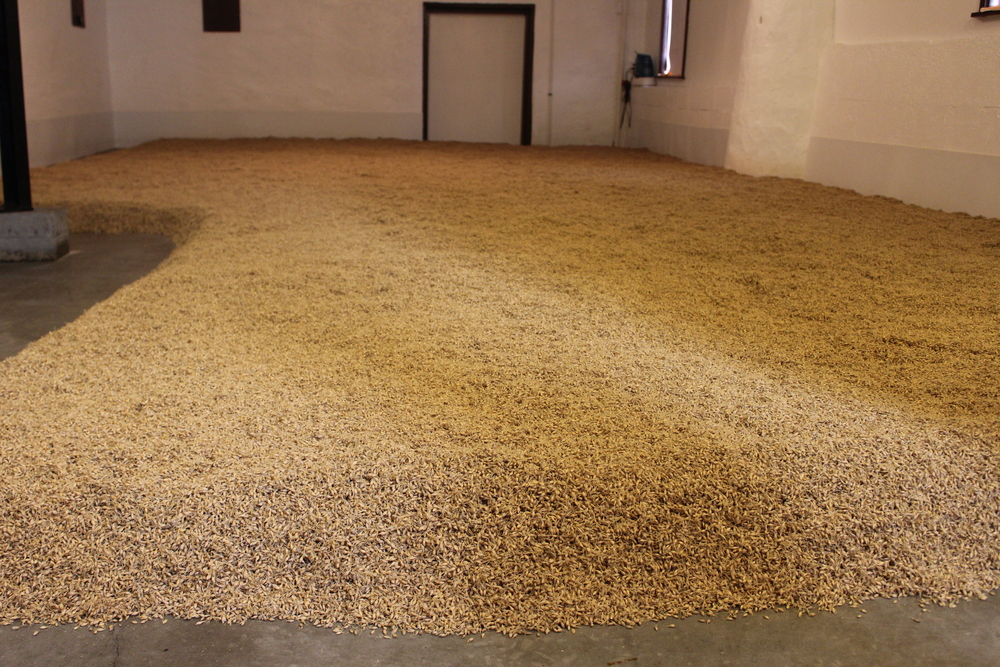 ...Every 4-8 hours the bed of grains need to be turned and raked.