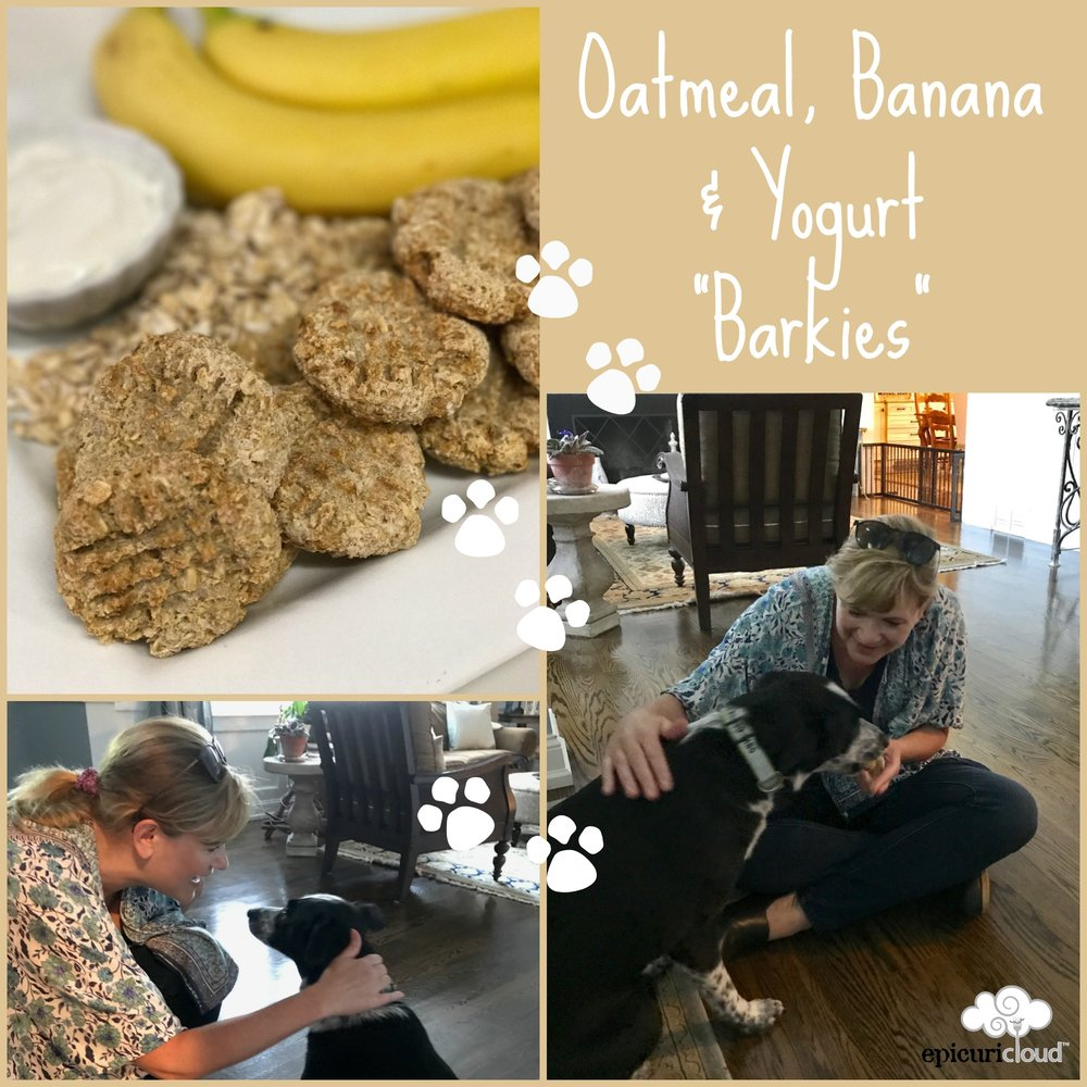 Oatmeal Banana and Yogurt Barkies Recipe - epicuricloud.com