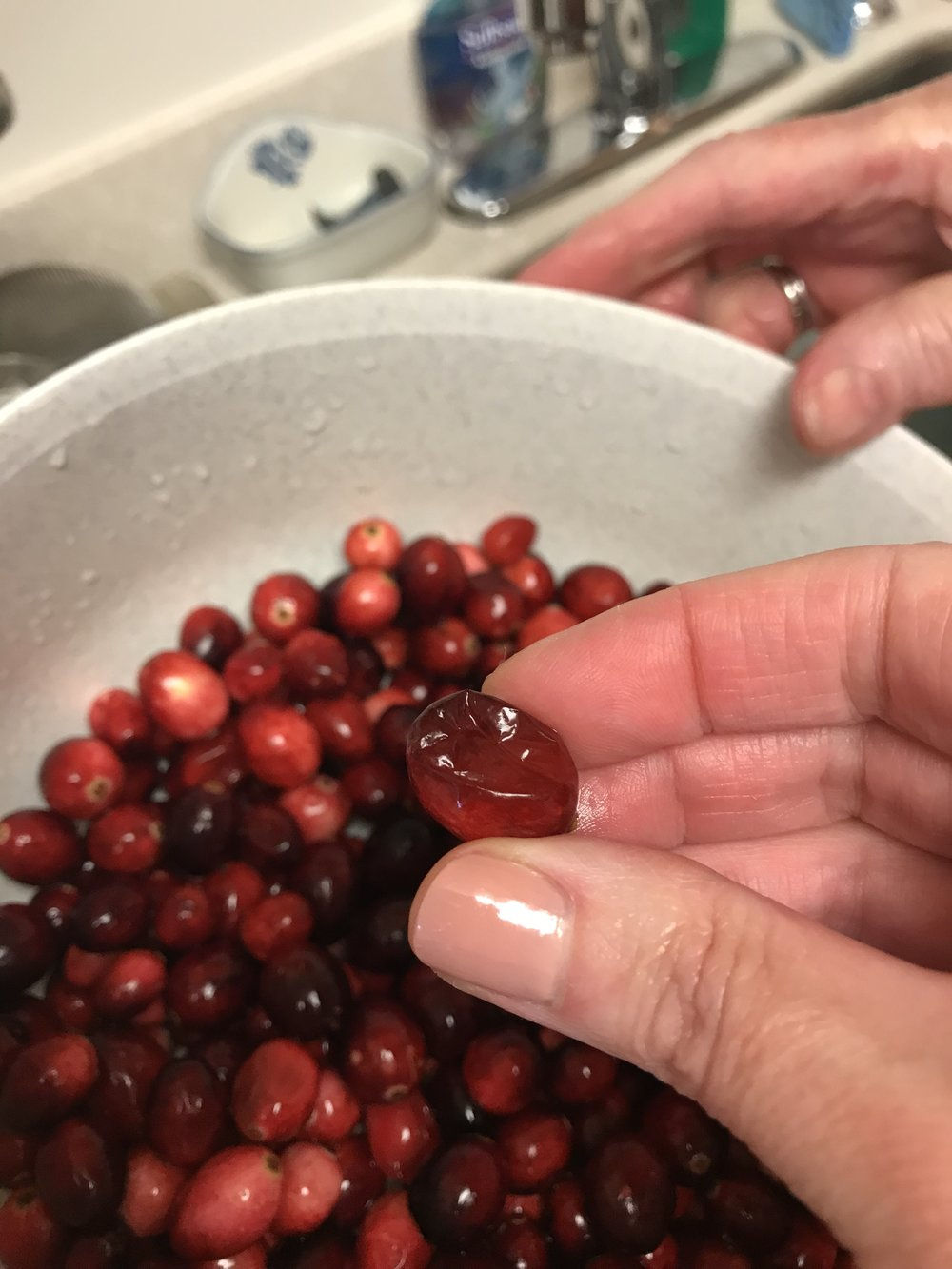 """Wash the cranberries and remove any """"bad berries"""""""