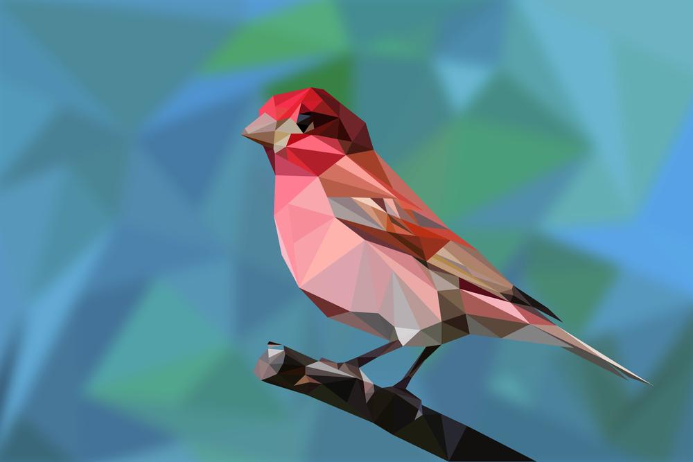 polybird2.jpg