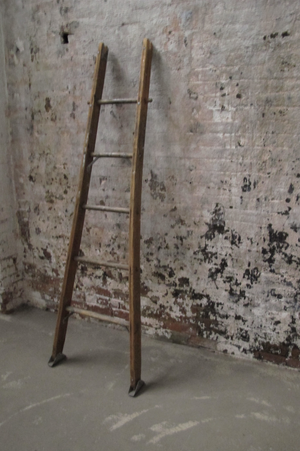 Wood 'Bowed 5-step' Orchard Ladder