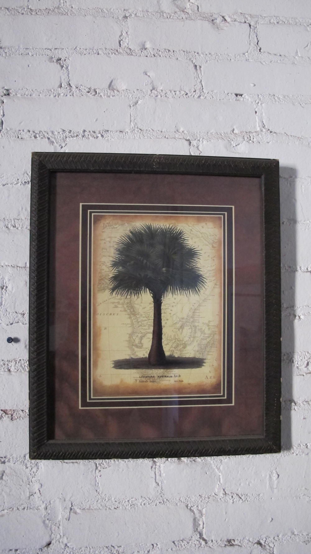 Framed Tree with border
