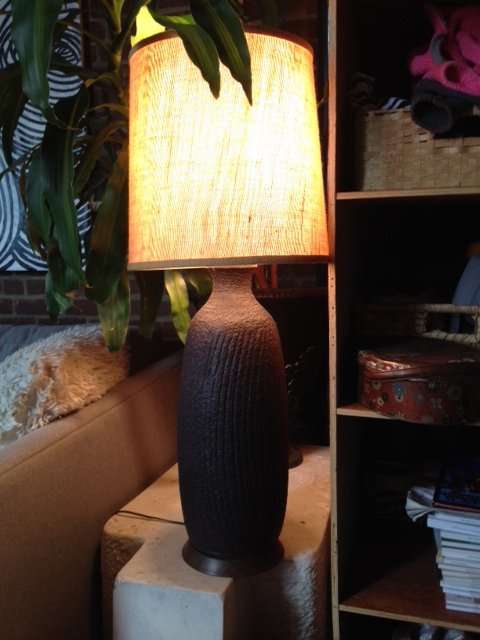 Dark Lamp with Shade $55