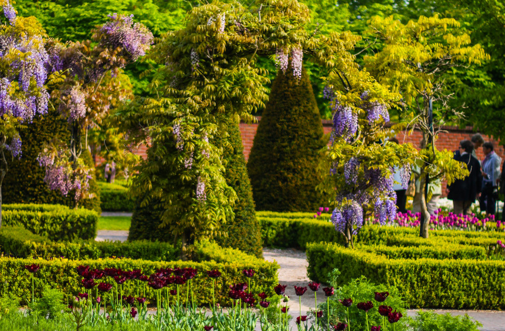 The Ultimate Guide to Visiting the Keukenhof, the Best Gardens of Europe