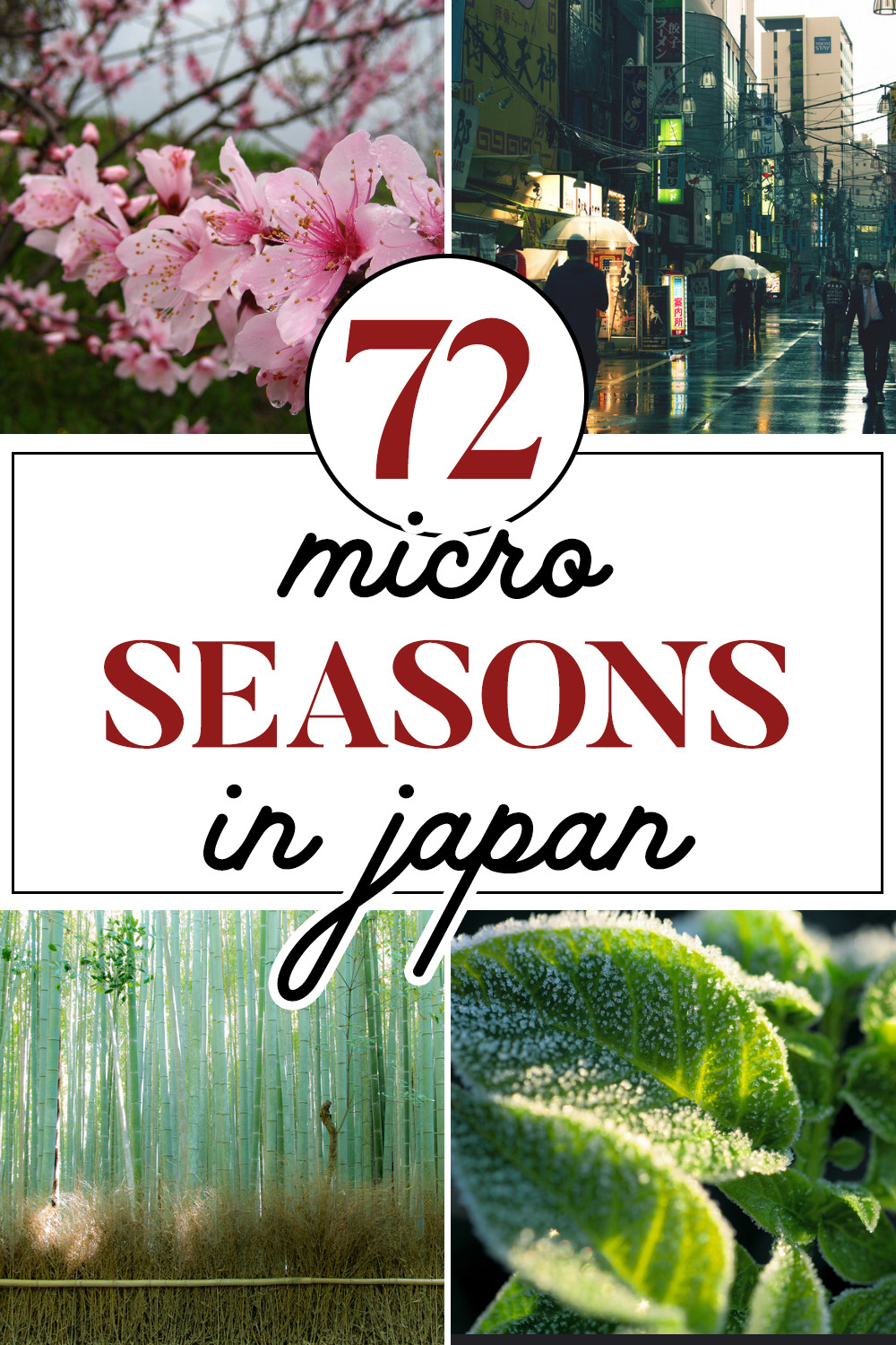 Japan's 72 Microseasons