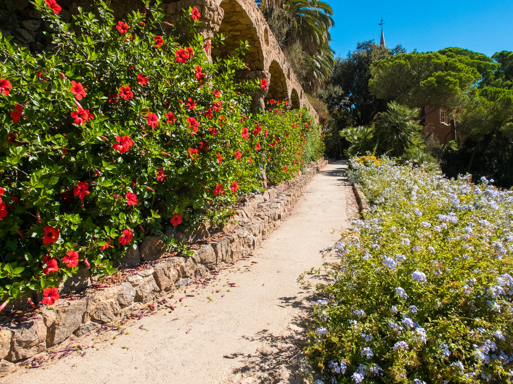 ULTIMATE Guide to Visiting Park Güell, Barcelona