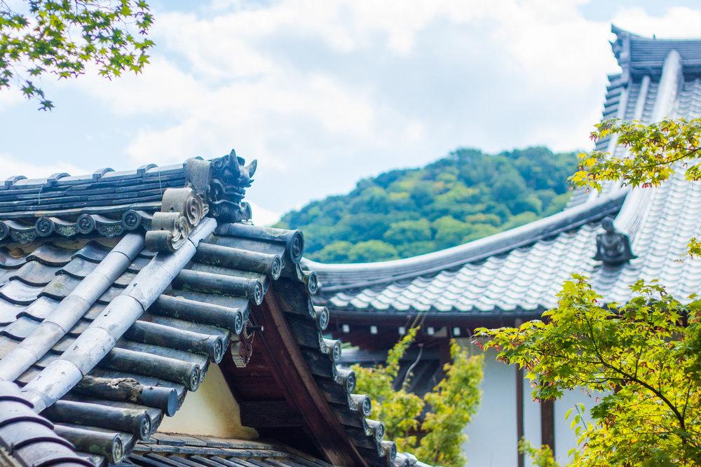 A Guide to Finding your Zen in the Peaceful and Serene Gardens of Tenryu-ji Temple Arashiyama