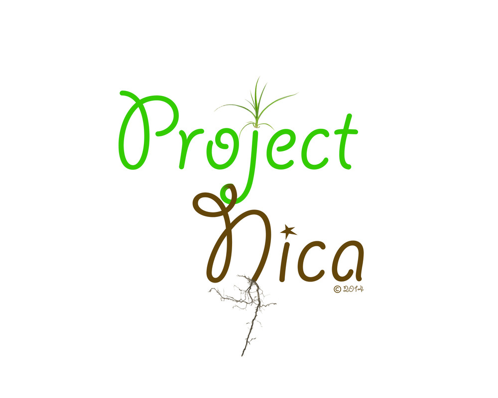 Project NICA provides Environmental, Educational and Healthcare projects for a landfill community at La Chureca.