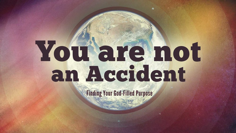 YouAreNotAnAccident.jpg