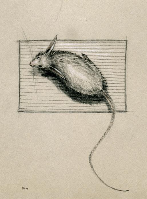 Sketch_66.jpg