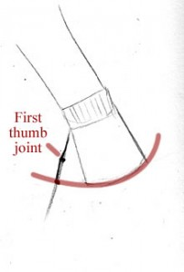 Hand: Reaching Down: Thumb joints, knuckle arc