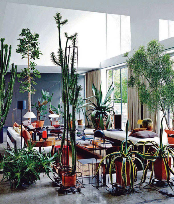 And of course, always a favorite image of my dream life with plants: Maurizio Zucchi's living room. via   the189.com