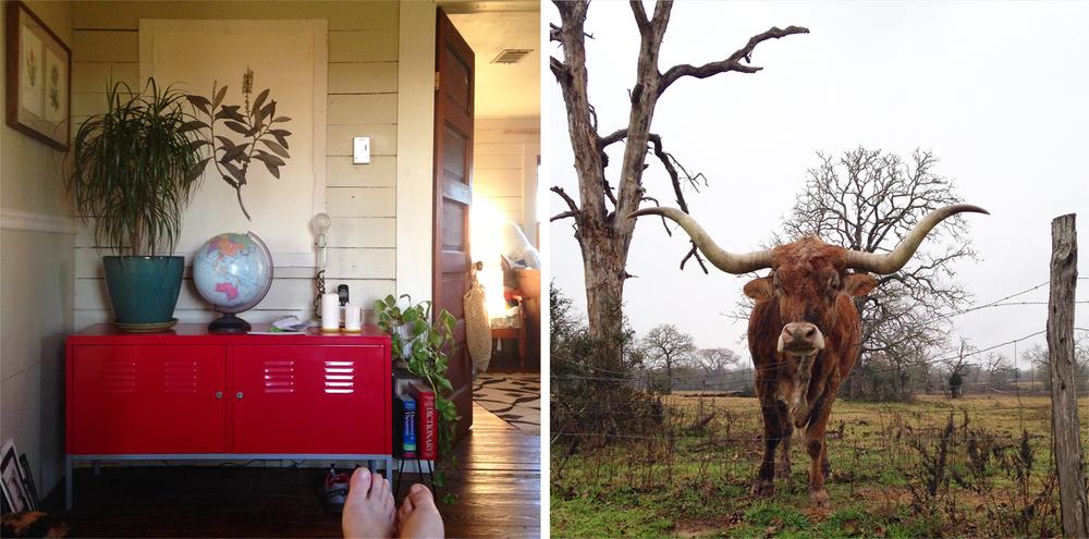 Texas_1_week.jpg