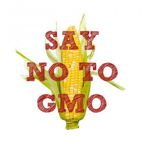 Please lets educate ourselves about Genetically Modified food. No Beuno!!!