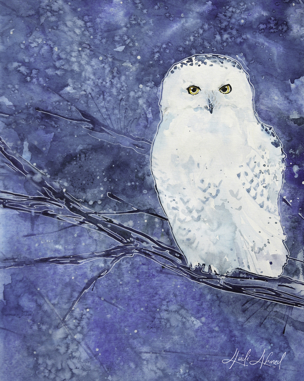 """Snowy Owl""                                                           © 2014 // Lost in Reverie"