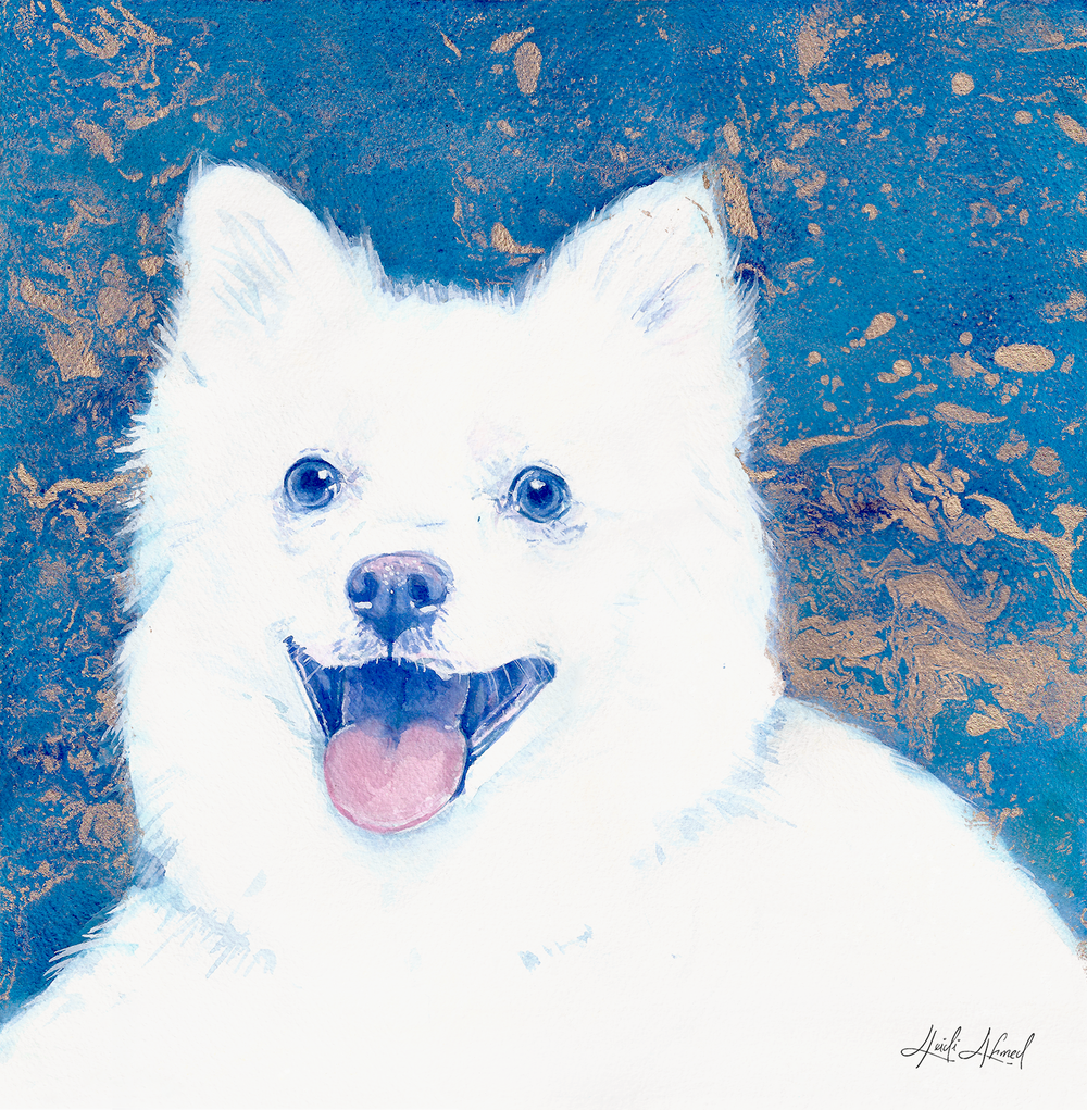 American-Eskimo-Dog-Portrait-Scan-Splice2.png