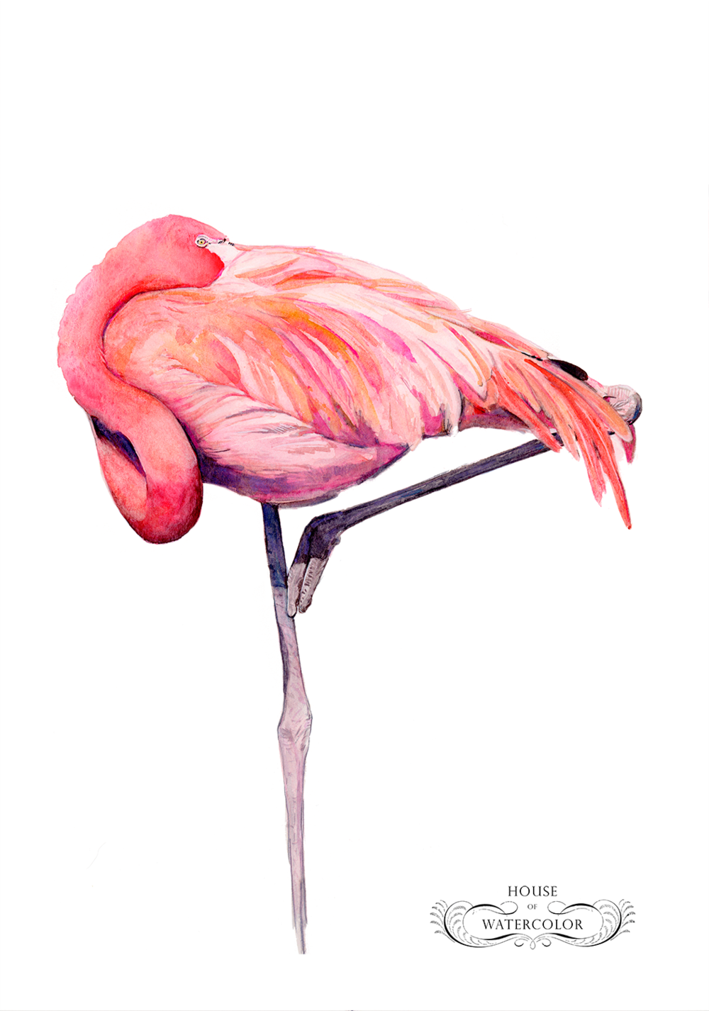 FEATURED GALLERY — House of Watercolor