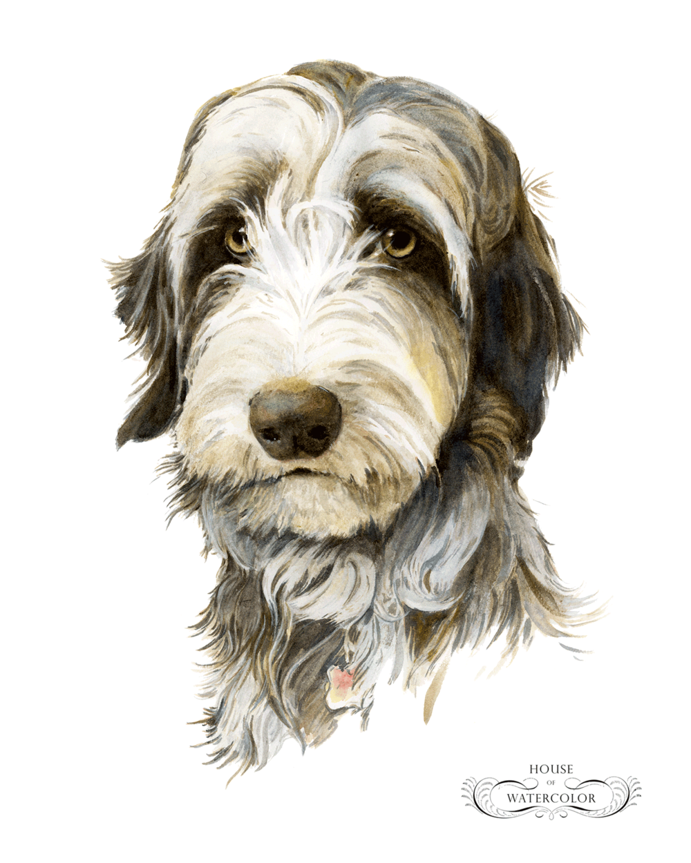 Ladybird-House-of-Watercolor-Pet-Portrait.png