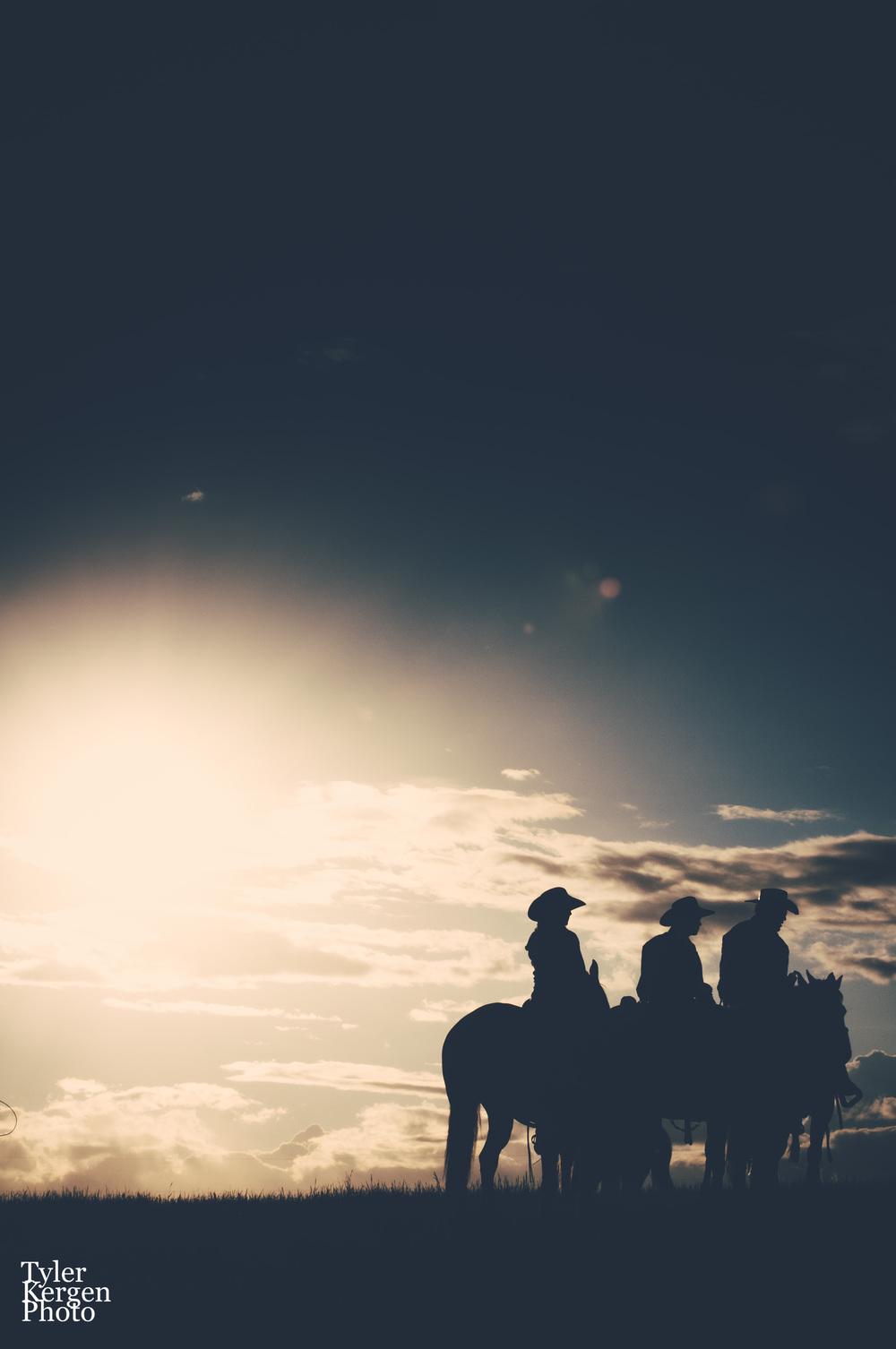 cowboys2.jpg
