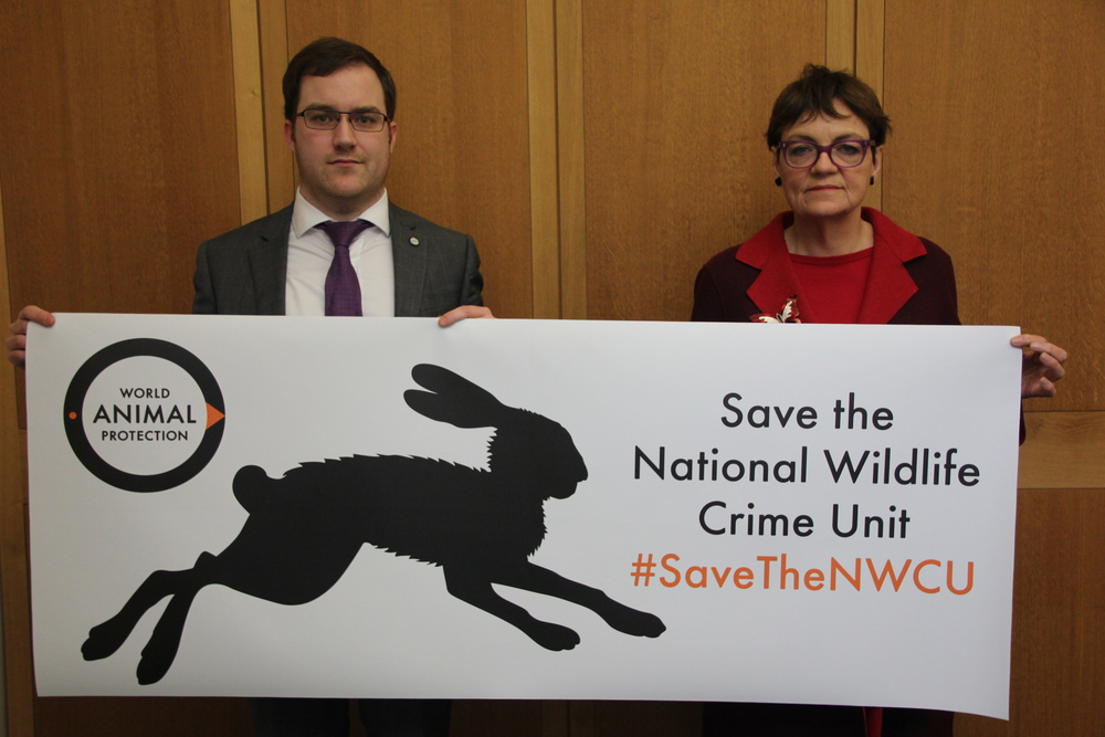 Fiona with Josh Kaile (Head of Public Affairs, World Animal Protection) at the event in Parliament