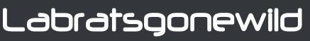 lrgw_logo_txt_techno.png
