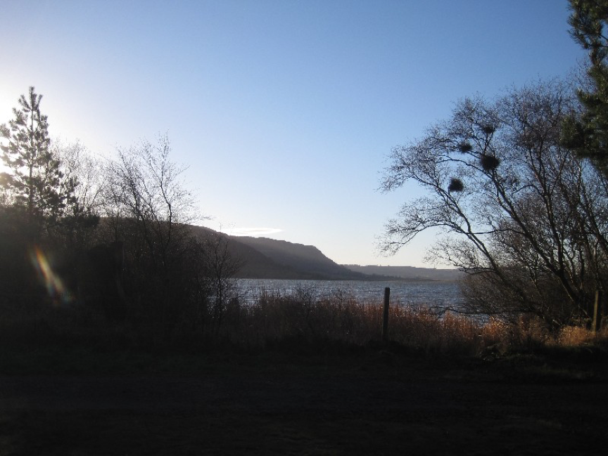 Winter afternoon light on the loch
