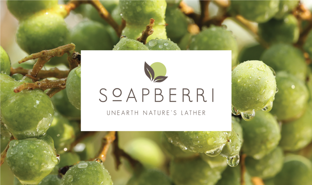 Soapberri Branding & Packaging |  branding & identity, packaging