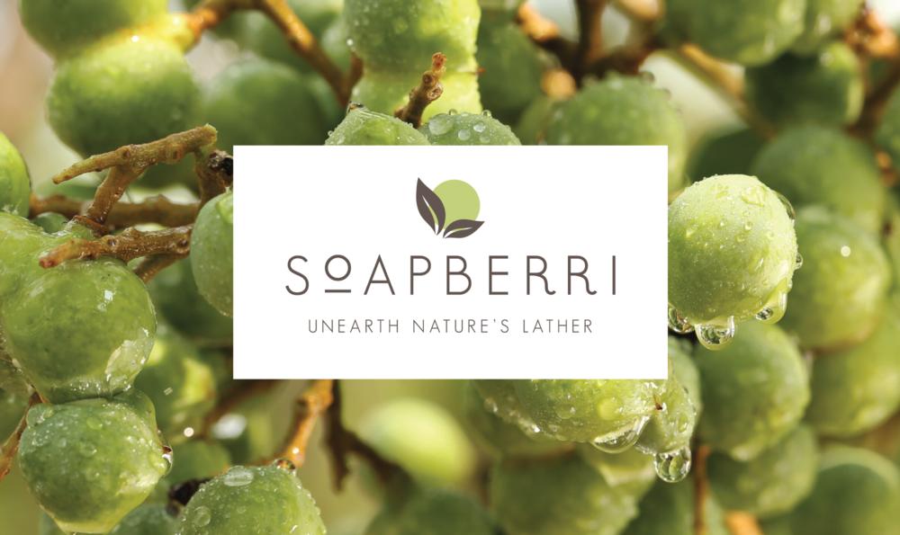 Soapberri Branding & Packaging | branding & identity, packaging