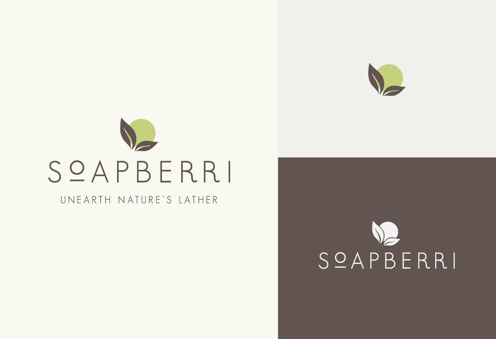 portfolio_soapberri_logovars.png