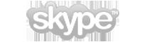 skype_logo copy.png
