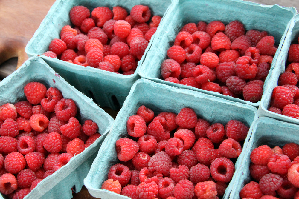 Copy of Raspberries