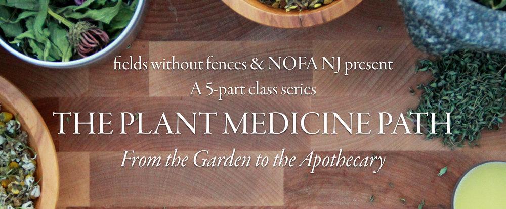 Event-Banner-Plant-Medicine-Path.jpg