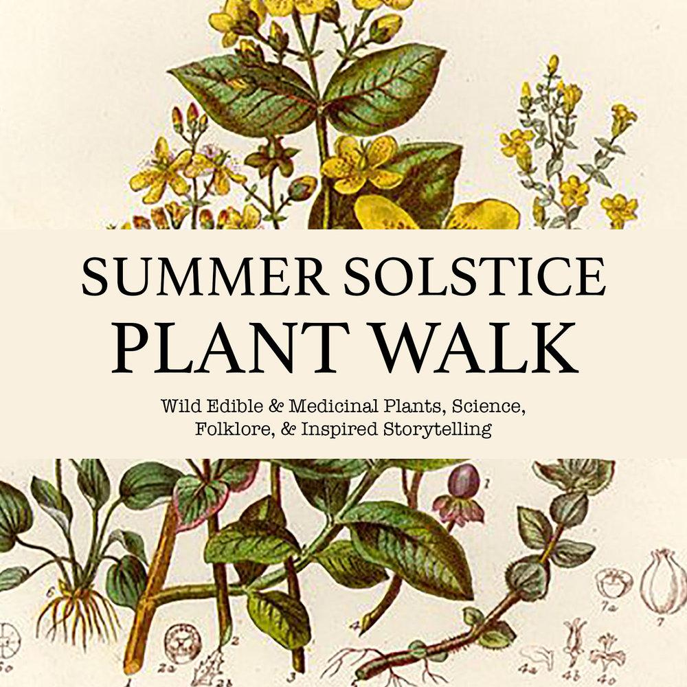 Summer-Solstice-Plant-Walk-Promo.jpg