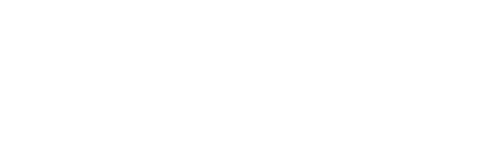project serve logo 2017 white.png