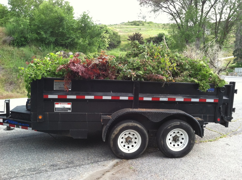 We can also haul away all of your debris
