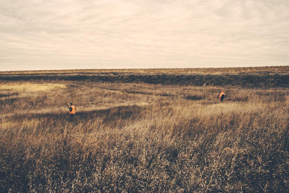 hunt (1 of 16).jpg