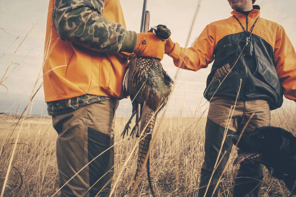 hunt (11 of 16).jpg