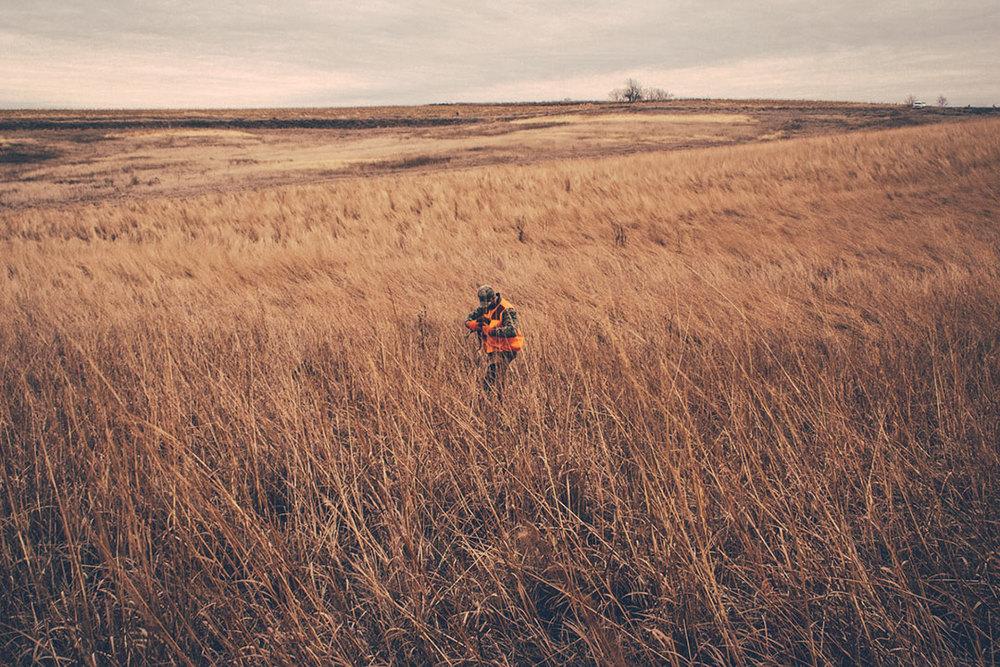 pheasant_hunt-(13-of-1).jpg
