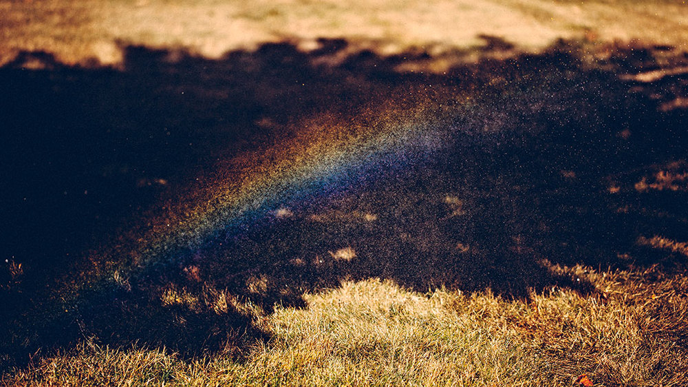 rainbow-(1-of-1).jpg
