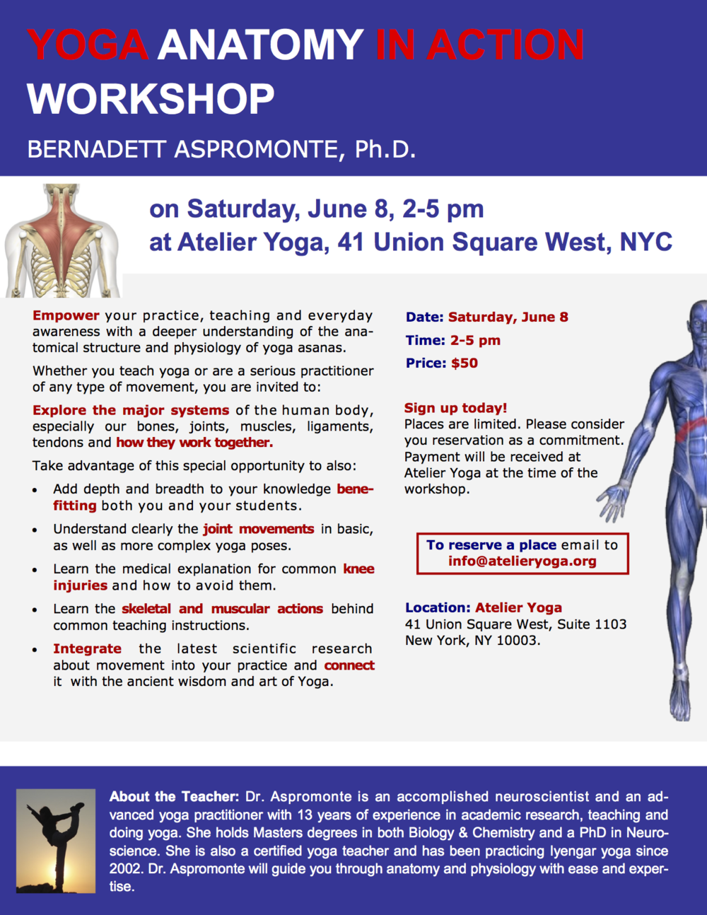 Yoga Anatomy In Action — Bernadett Aspromonte, Ph.D. — Atelier Yoga
