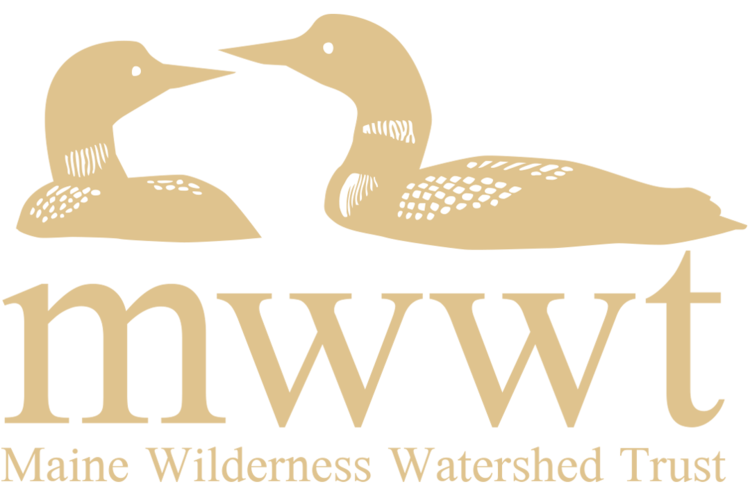 The Maine Wilderness Watershed Trust