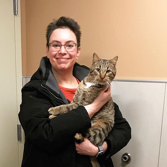 Said goodbye to the foster cat Jack last week. Hope he finds a forever home soon!  #adoptdontshop #fostercat #browntabby