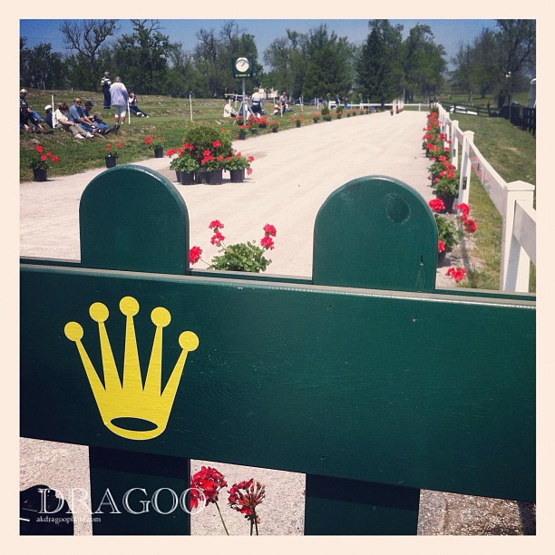 Let's get ready to jog! #rk3de  (Taken with  Instagram  at Kentucky Horse Park)