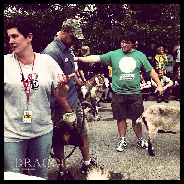 Bitchy lady at the wart of leash gate. She then blamed the kid on the sideline with popcorn for her loss.  (Taken with  Instagram  at Slyfox Goat Races 2012)