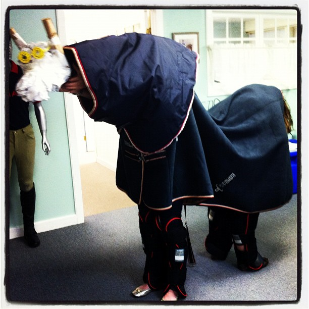 Fun with Horseware. (Taken with Instagram)