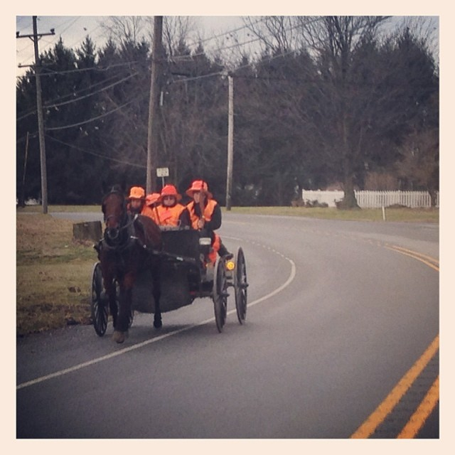 Amish hunting party.