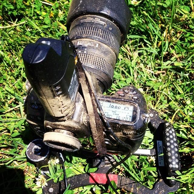 The life a remote camera.