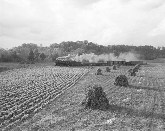 NW1257 Train Passes Stacked Corn Stalks, Watauga, VA, 1956  16 x 20 inches silver print