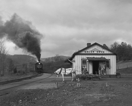 NW1230 Maud Bows to the Virginia Creeper, Green Cove, VA, 1956  16 x 20 inches silver print