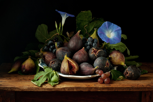Paulette Tavormina Figs and Morning Glories, After G.G., 2010  20 x 30 inches archival pigment print